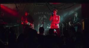 2013_szarvas_zebra_club